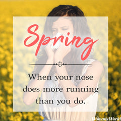 Spring Pollen and Allergies Hayfever sinus Asthma