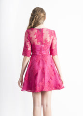 Allison Feminine Lace Dress