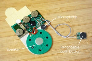 Greeting Card Recorder (Sound Module) - Moinàrchy MIY (HK)