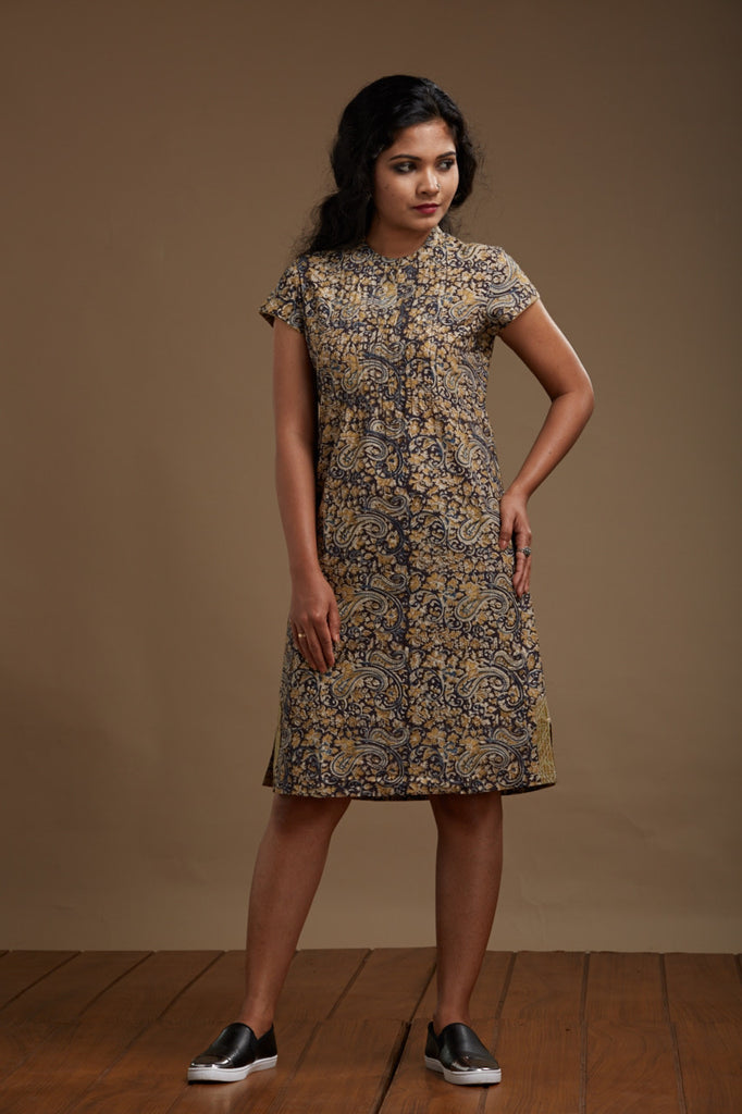 Kabira Pintucked Dress