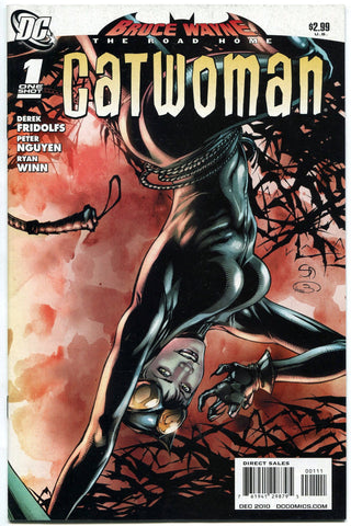 Bruce Wayne the Road Home Catwoman #1 One-Shot DC Harley Quinn Batman Poison Ivy - redrum comics