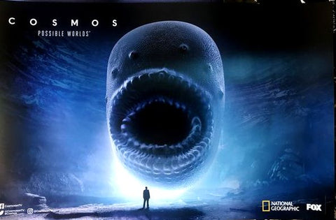 "Cosmos Possible Worlds SDCC 2018 11""x17"" Promo Poster FOX National Geographic TV"