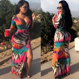 Multi Color Tiger Maxi Dress