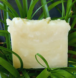 All-Natural Don't Bug Me! Repellent Soap - Natures Bath & Body