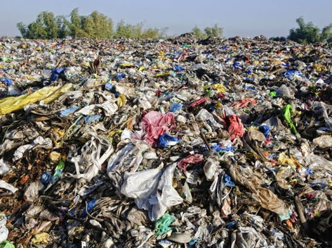 Landfill // Photo from Shutterstock