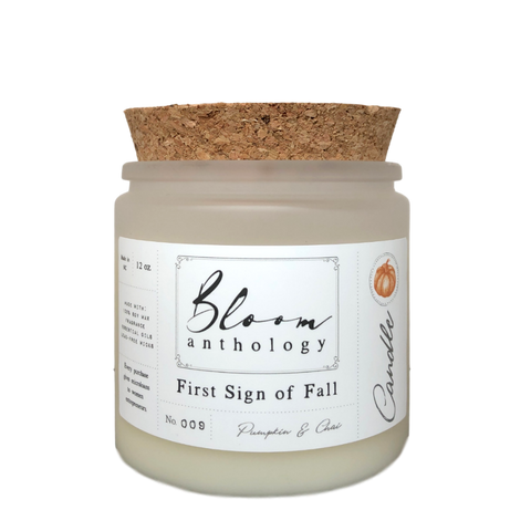 Pumpkin Spice Candle - Large