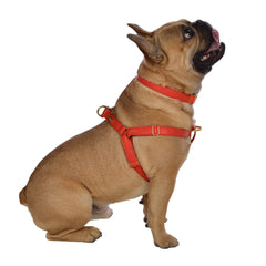 Dog Harness in Soft Flirt Leather with Wool felt - lurril