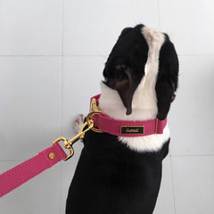 Dog Collar in Soft Pink Leather with Wool felt - lurril