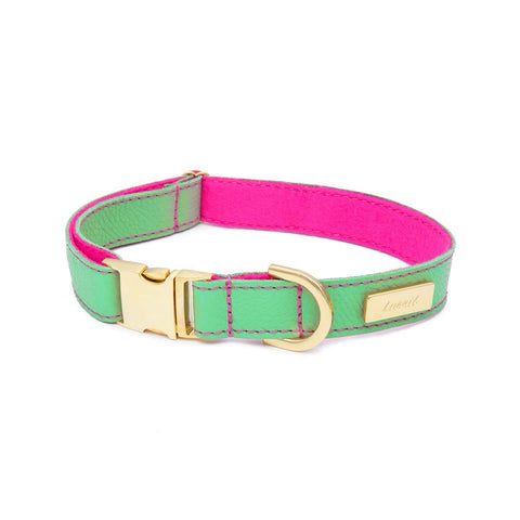 Dog Collar in Soft Mint Leather with Wool felt - lurril