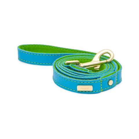 Dog Leash in Soft Turquoise Leather with Wool felt - lurril