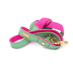 Dog Leash in Soft Mint Leather with Wool felt - lurril