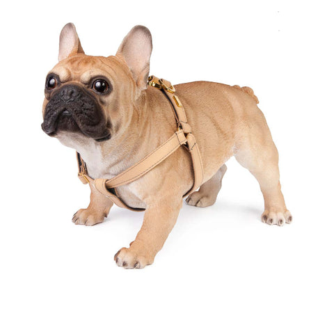 Dog Harness in Soft Champagne Leather with Wool felt - lurril