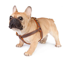 Dog Harness in Soft Chocolate Brown Leather with Wool felt - lurril