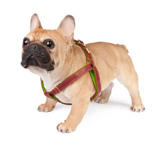 Dog Harness in Soft Red Leather with Wool felt - lurril