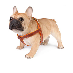 Dog Harness in Antique Brown Leather with Wool felt - lurril