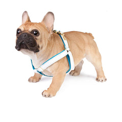 Dog Harness in Soft White Leather with Wool felt - lurril