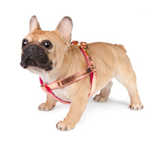 Dog Harness in Soft Rose Gold Leather with Wool felt - lurril
