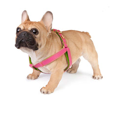 Dog Harness in Soft Pink Leather with Wool felt - lurril