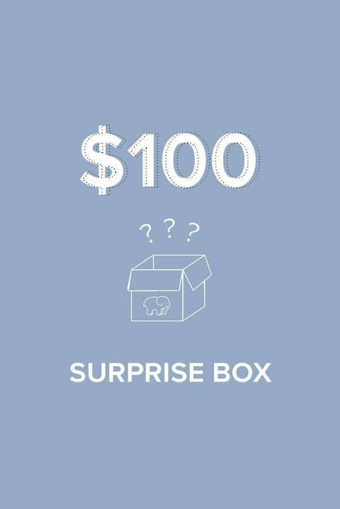 Ivory Ella Bundle XS June $100 Surprise Box