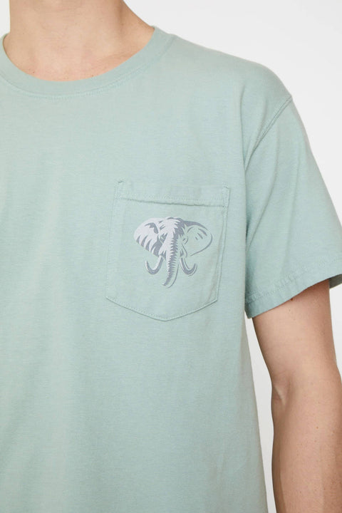 Ivory Ella S Lily Pad Stand Up for Elephants Classic Fit Tee
