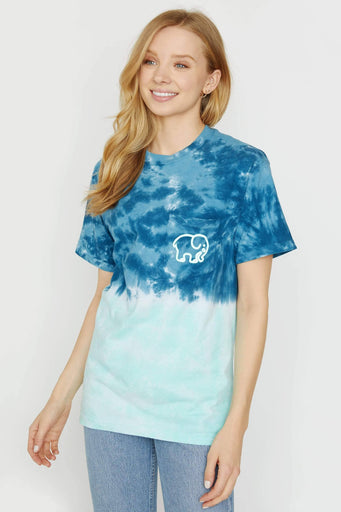Navy & Mint Ombre Tee