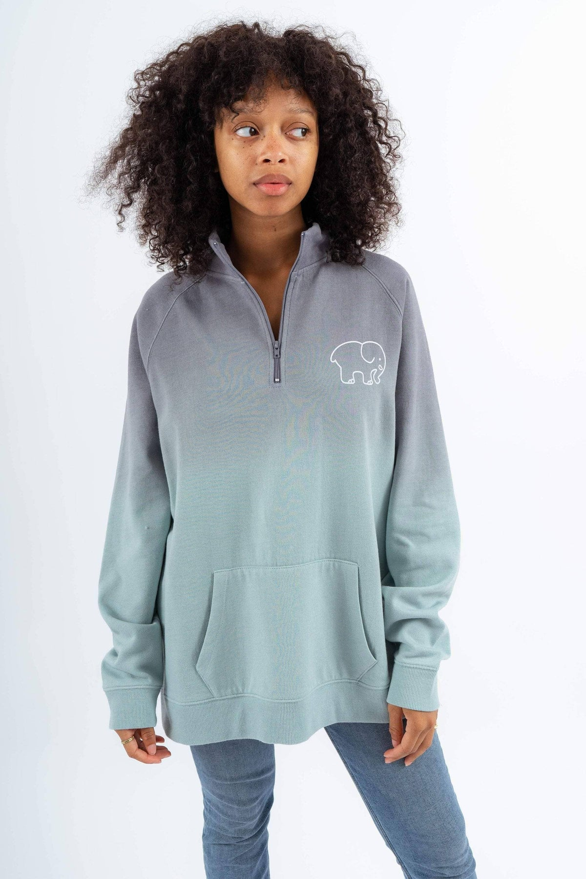 5878aeec7b2e Ivory Ella Women s Sweatshirts XS Grey and Mint Ombre Quarter Zip