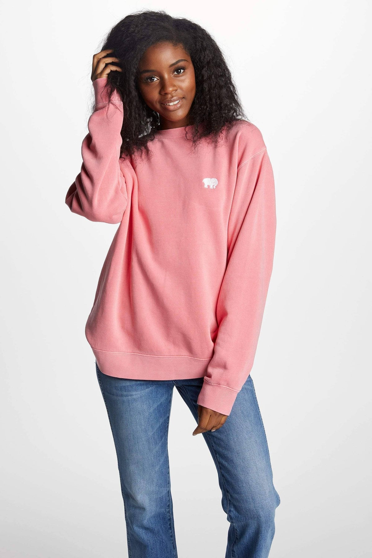 Ivory Ella Women's Sweatshirts XS Pink Embroidered Crew Neck Sweatshirt