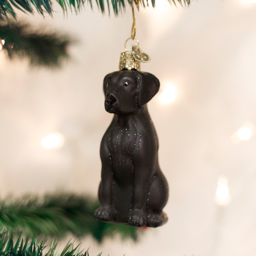 Old World Christmas Black Labrador Glass Ornament