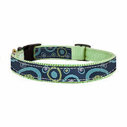 Perris Nylon Ribbon Dog Collar - CarouselHorseTack.com