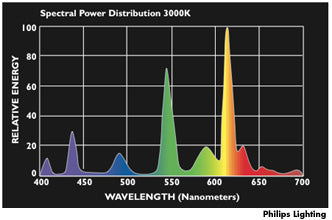 Warm Light Spectral Power Distribution