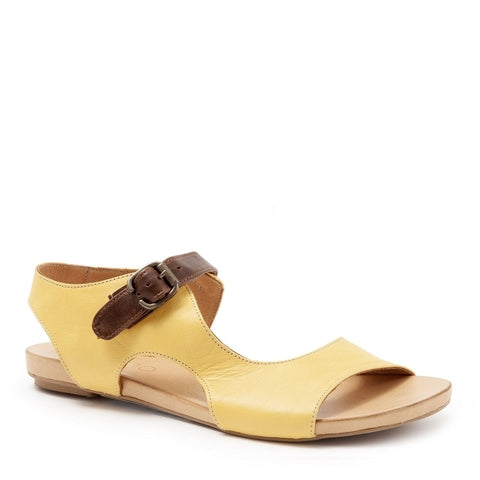 YELLOW W/BROWN TOLEDO
