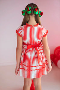 Vintage Holly Berry Dress