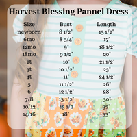 Harvest Blessing Panel Dress (4003201712173)