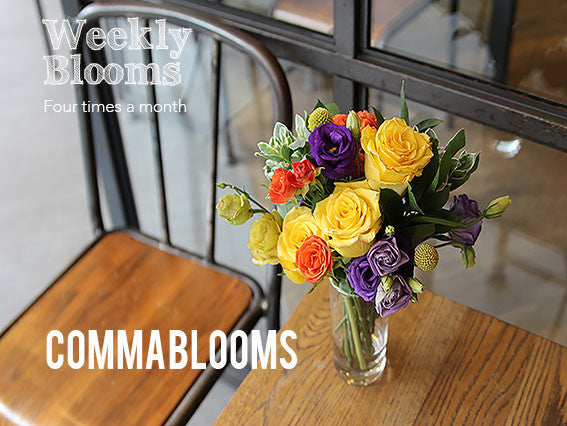 Weekly Blooms (Discounted Price)