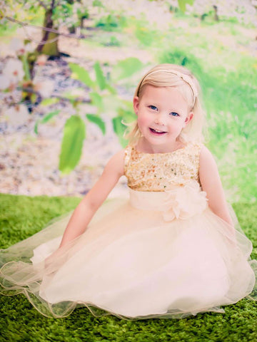 Gold Sequin Tulle Skirt Flower Girl Dress