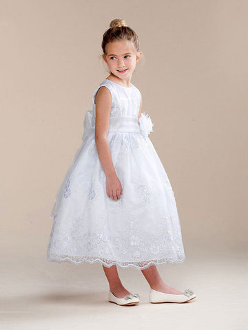 Sweet Embroidered Dress with Organza Skirt