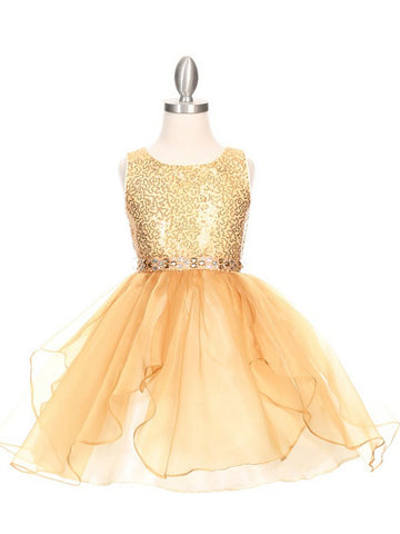 Sparkling Sequin Organza Dress