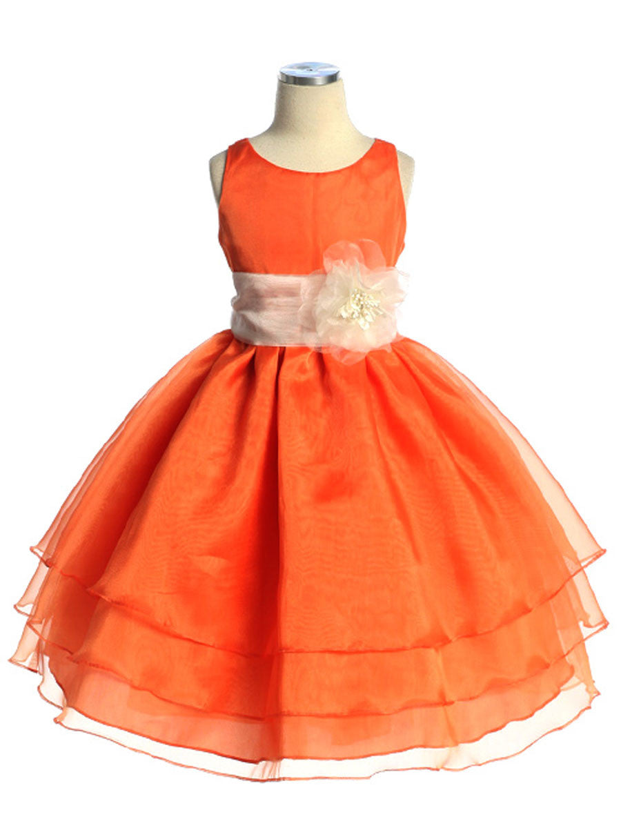 Adorable Champagne Overlay Flower Girl Dress with Sash and Flower ...
