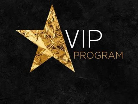 "6 month VIP Program ""Get your business right"""