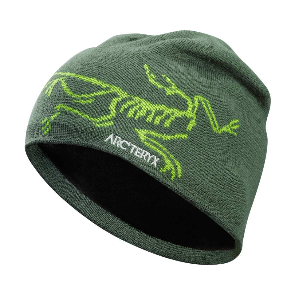 Arc'teryx Bird Head Toque Shoreline/Titanite