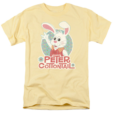 HERE COMES PETER COTTONTAIL/PETER WAVE