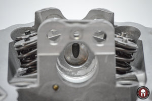 Can Am 800 Gen 1 Bom Race Heads - Warranty Killer Performance