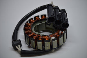 Polaris Stator - Warranty Killer Performance