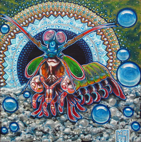 King Prawn (Peacock Mantis Shrimp), art - Michael Garfield Visionary Art (michaelgarfieldart.com)