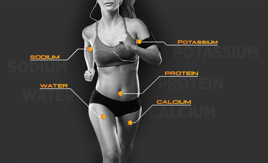 PerfectAmino Electrolytes - What's Lost When You Sweat