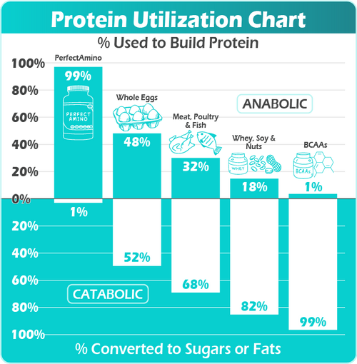 Anabolic Pathways - Usable Body Protein