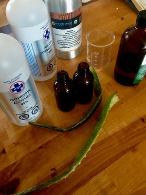 Immune Boost Suggestions during COVID-19 with DIY Hand Sanitizer recipe
