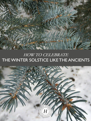 Herbal Traditions and the Winter Solstice
