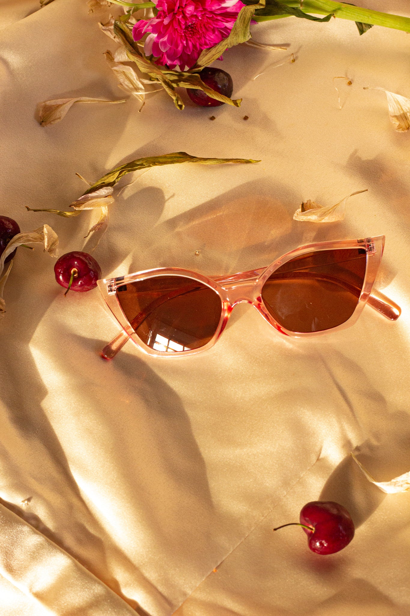 Transparent Cat Eye Sunglasses - Sugar + Style