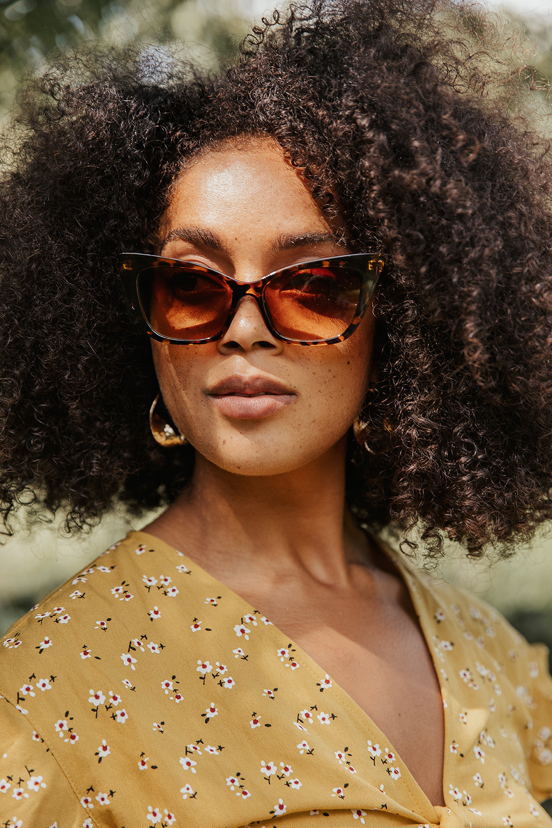 Wide Classic Cat Eye Sunglasses - Sugar + Style